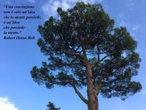 """""""Una convinzione non è solo un'idea che la mente possiede, è un'idea che possiede la mente"""" (Robert Oxton Bolt)"""