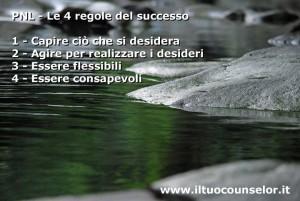 PNL - le 4 regole del successo
