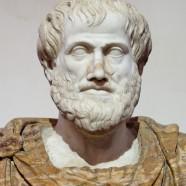 """""""Ciò che dobbiamo imparare a fare, lo impariamo facendo."""" (Aristotele)"""