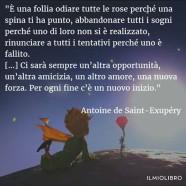 """""""È una follia odiare tutte le rose solo perché una spina ti ha punto, abbandonare tutti i sogni perché uno di loro non si è realizzato, rinunciare a tutti i tentativi perché uno è fallito. (…) Ci sarà sempre un'altrà opportunità, un'altra amicizia, un altro amore, una nuova forza. Per ogni fine c'è un nuovo inizio."""" (Antoine de Saint-Exupéry)"""