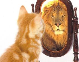 Gatto che si vede leone
