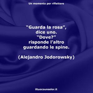 """""""Guarda la rosa"""", dice uno. """"Dove?"""" risponde l'altro guardando le spine. (Alejandro Jodorowsky)"""