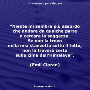 """""""Niente mi sembra più assurdo che andare da qualche parte a cercare la saggezza. Se non la trovo nella mia stanzetta sotto il tetto, non la troverò certo sulle cime dell'Himalaya"""". (Emil Cioran)"""