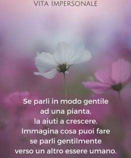 """""""Se parli in modo gentile ad una pianta, la aiuti a crescere. Immagina cosa puoi fare se parli gentilmente verso un altro essere umano."""" (Cit.)"""