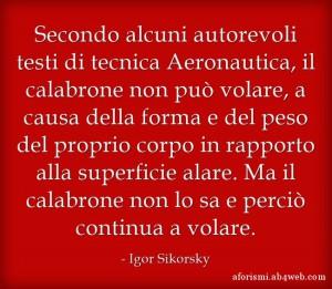 """""""Secondo alcuni autorevoli testi di tecnica Aeronautica, il calabrone non può volare, a causa della forma e del peso del proprio corpo in rapporto alla superficie alare. Ma il calabrone non lo sa e perciò continua a volare."""" (Igor Sikorsky)"""