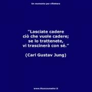 "Lasciate cadere ciò che vuole cadere; se lo trattenete, vi trascinerà con sé (Carl Gustav Jung) • <a style=""font-size:0.8em;"" href=""http://www.flickr.com/photos/158938934@N02/38061162581/"" target=""_blank"">View on Flickr</a>"