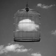 Nuvola in gabbia – Francesc Català Roca