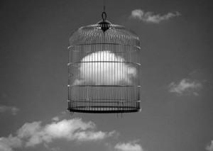 Francesc Català Roca - nuvola in gabbia