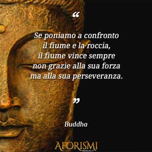 """""""Se poniamo a confronto il fiume e la roccia, il fiume vince sempre non grazie alla sua forza ma alla sua perseveranza."""" (Buddha)"""