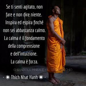 """""""Se ti senti agitato, non fare e non dire niente. Inspira ed espira finché non sei abbastanza calmo. La calma è il fondamento della comprensione e dell'intuizione. La calma è forza."""" (Thich Nhat Hanh)"""