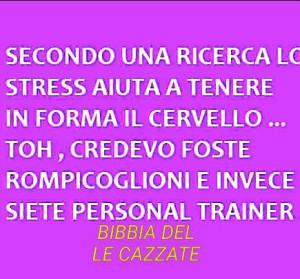 """""""Secondo una ricerca lo stress aiuta a tenere in forma il cervello... Toh, credevo foste rompicoglioni e invece siete personal trainer"""""""