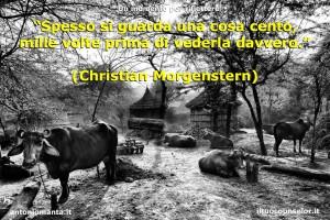 """""""Spesso si guarda una cosa cento, mille volte prima di vederla davvero."""" (Christian Morgenstern)"""