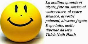 """""""La Mattina quando vi alzate, fate un sorriso al vostro cuore, al vostro stomaco, ai vostri polmoni, al vostro fegato. Dopo tutto, molto dipende da loro."""" (Thich Nath Hanh)"""