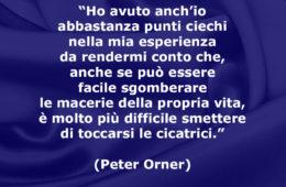 """""""Ho avuto anch'io abbastanza punti ciechi nella mia esperienza da rendermi conto che, anche se può essere facile sgomberare le macerie della propria vita, è molto più difficile smettere di toccarsi le cicatrici."""" (Peter Orner)"""